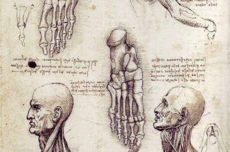 Why does Rolfing work?